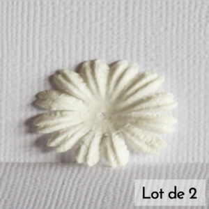 Daisy 1″ (2,5cm) – Lot de 2 – Blanc