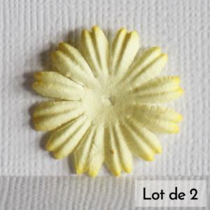 Daisy 1″ (2,5cm) – Lot de 2 – Jaune pâle