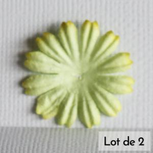 Daisy 1″ (2,5cm) – Lot de 2 – Vert tilleul