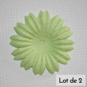 DAISY 1″ (2.5cm) – Lot de 2 – Vert menthe
