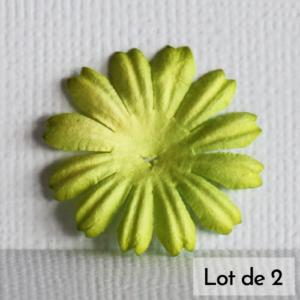 Daisy 1″ (2,5cm) – Lot de 2 – Vert céleri