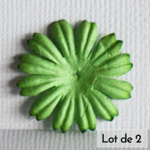 Daisy 1″ (2,5cm) – Lot de 2 – Vert pomme