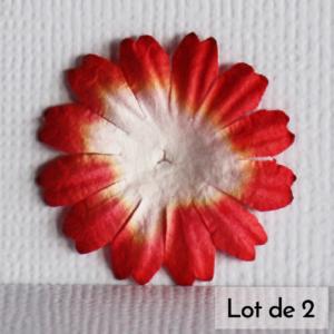 Daisy 1″ (2,5cm) bicolore – Lot de 2 – Blanc/Rouge