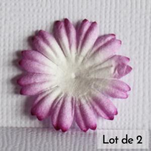 Daisy 1″ (2,5cm) bicolore – Lot de 2 – Blanc/Mauve