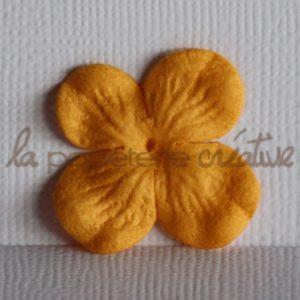 Hydrangea 1″ (2,5cm) – Lot de 2 – Abricot