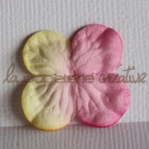 Hydrangea 1″ (2,5cm) bicolore – Lot de 2 – Vanille/Fraise