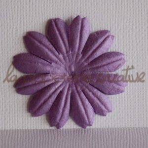 Daisy 1,5″ (4cm) – Lot de 2 – Violet
