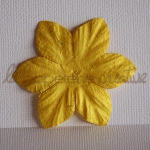 Clematis 2″ (5cm) – Lot de 2 – Jaune citron