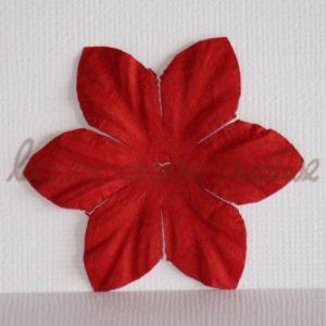 Clematis 2″ (5cm) – Lot de 2 – Rouge