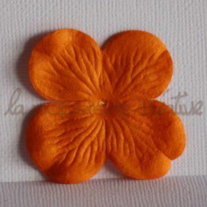 Hydrangea large 2″ (5cm) – Lot de 2 – Abricot