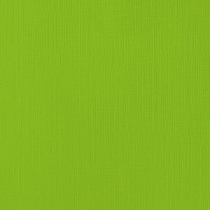 Cardstock texturé 12×12″ – Cricket