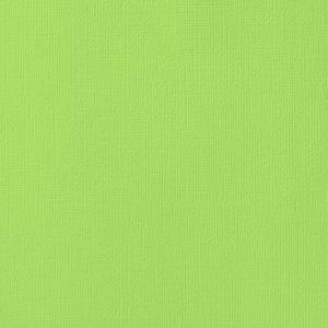 Cardstock texturé 12×12″ – Key lime