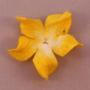 Curly Gardenia 1″ (2.5cm) – Lot de 2 – Jaune citron