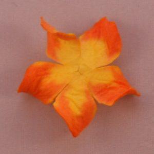 Curly Gardenia 1″ (2.5cm) bicolore – Lot de 2 – Jaune/Orange