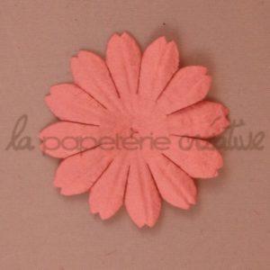 Daisy 1.5″ (4cm) – Lot de 2 – Capucine