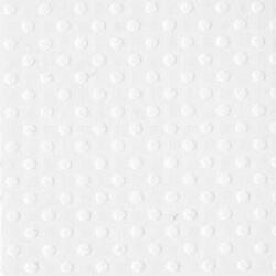 Cardstock embossé 12×12″ Dotted Swiss Salt