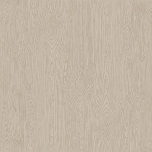 "Cardstock embossé ""Woodgrain"" – Nickle"