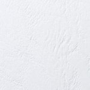 Papier A4 grain cuir 250g – Blanc