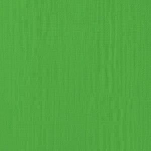 Cardstock texturé 12×12″ – Grass